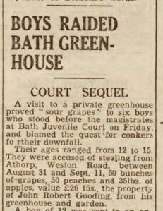 Bath Chronicle 18 October 1947 Boys Raid Bath Greenhouse