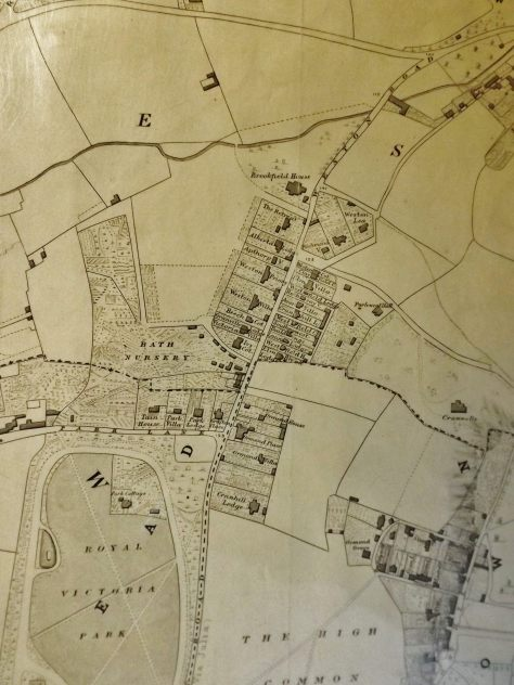 Cotterell's Map 1852 Detail (Bath Record Office)